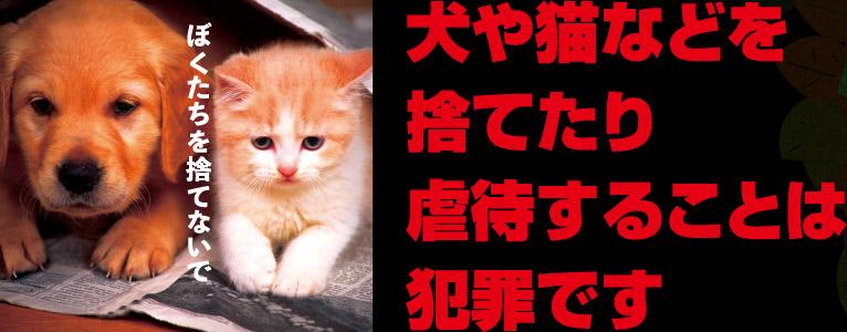 犬や猫などを捨てたり虐待することは犯罪です